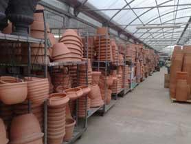 Viavaio happy garden vendita di piante e fiori for Vasi in terracotta da giardino prezzo